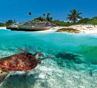 Круиз в Карибския басейн