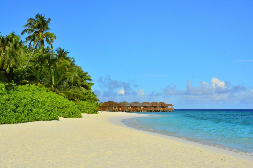 Почивка на Малдивите в Hotel Fihalhohi Island Resort 4*