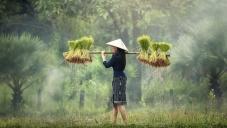 Екскурзия Виетнам и Камбоджа, My Way Travel, Почивка в На Чанг
